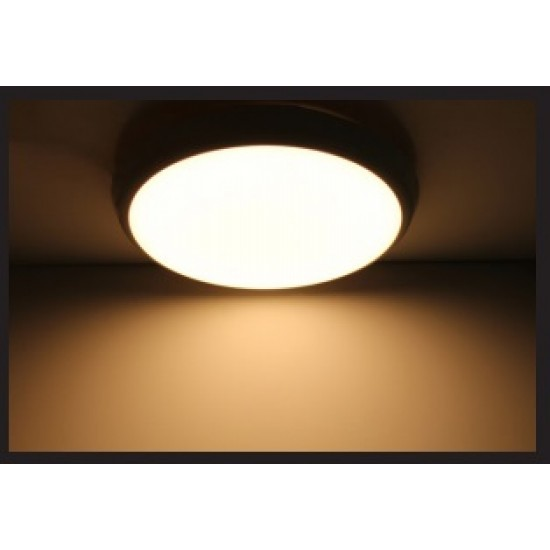 Round ceiling light (warm white)