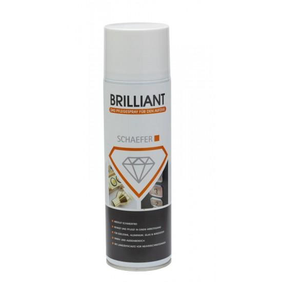 Stainless Steel Care Spray Brillant (500 ml)